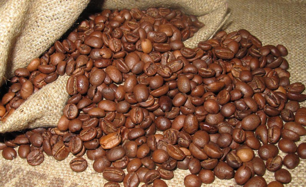 coffee-arabica